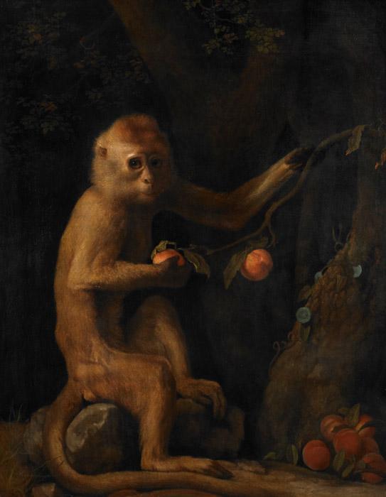 フリー絵画 ジョージ・スタッブス作「サル」