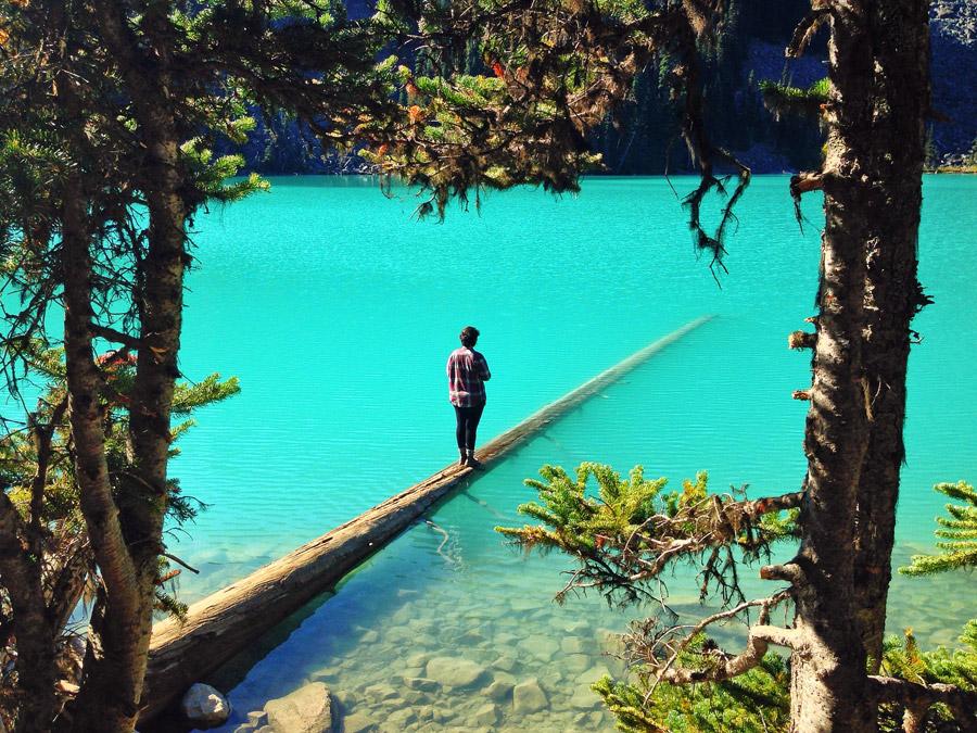 フリー写真 湖に浮かぶ倒木の上に立っている人物
