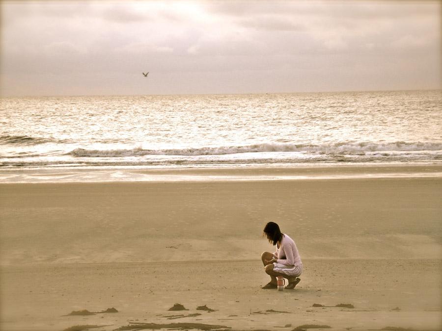 フリー写真 浜辺で貝殻を拾う女性