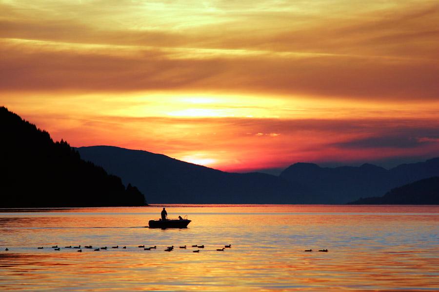 フリー写真 夕暮れの入り江と漁師と水鳥の群れ
