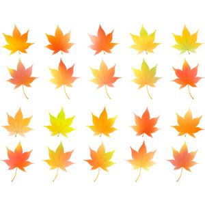 フリーイラスト, ベクター画像, AI, 植物, 葉っぱ, もみじ(カエデ), 紅葉(黄葉), 秋