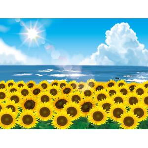 フリーイラスト, ベクター画像, AI, 風景, 植物, 花, 向日葵(ヒマワリ), 黄色の花, 花畑, 海, 積乱雲(入道雲), 太陽光(日光), 夏
