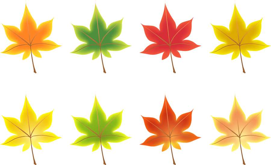 フリーイラスト 春夏秋冬のモミジの葉のセット