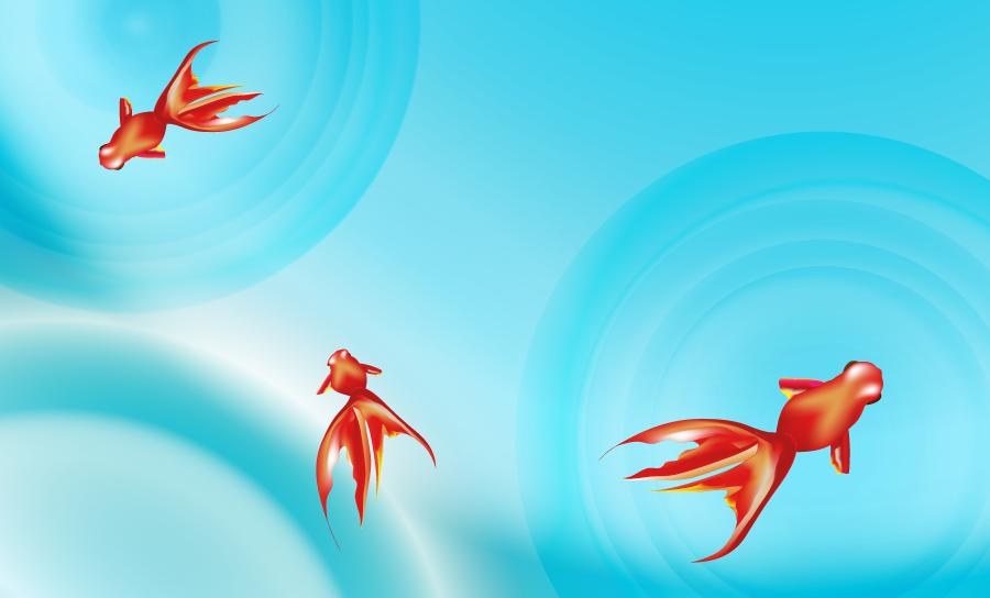 フリーイラスト 波紋と泳ぐ金魚の背景