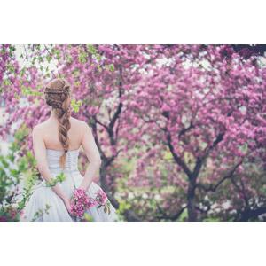 フリー写真, 人物, 女性, 外国人女性, 後ろ姿, 花嫁(新婦), ウェディングドレス, 人と花, 三つ編み, 後ろ姿, 人と風景, ピンク色の花, 結婚式(ブライダル)