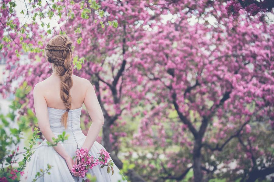 フリー写真 ピンク色の木花と花嫁の後ろ姿
