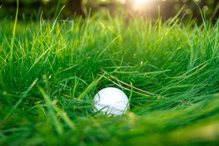 フリー写真 ラフに入ったゴルフボール