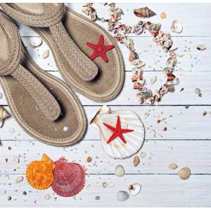 フリー写真, 背景, 靴(シューズ), ビーチサンダル, 貝殻, ヒトデ, 夏