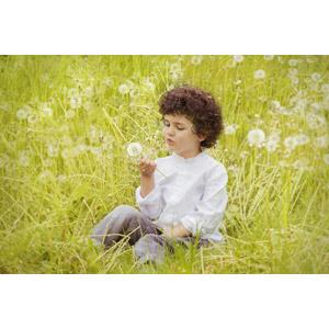 フリー写真, 人物, 子供, 男の子, 外国の男の子, スペイン人, 人と風景, 草むら, 蒲公英(タンポポ), 綿毛, 座る(地面)
