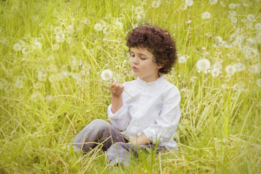 フリー写真 綿毛のタンポポに囲まれる外国の男の子