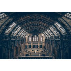 フリー写真, 風景, 建造物, 建築物, 博物館(美術館), イギリスの風景, ロンドン, ロンドン自然史博物館