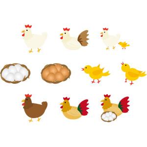 フリーイラスト, ベクター画像, AI, 動物, 鳥類, 鶏(ニワトリ), ひよこ(ヒヨコ), 親子(動物), 卵(タマゴ), 酉年