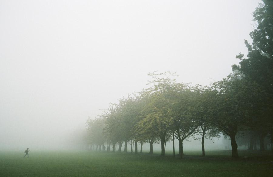 フリー写真 霧に包まれた公園の木々と歩く人物