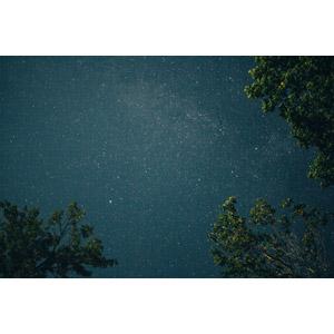 フリー写真, 風景, 自然, 夜, 夜空, 星(スター)