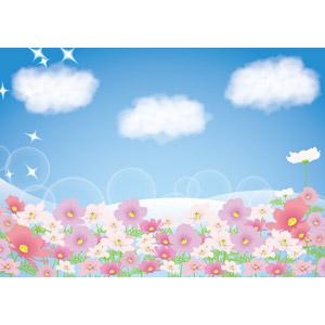 フリーイラスト, ベクター画像, AI, 背景, 植物, 花, コスモス, コスモス(秋桜), ピンク色の花, 青空, 雲, 輝き, 秋
