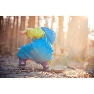 フリー写真, 人物, 子供, しゃがむ, 後ろ姿, 人と風景, 森林, 太陽光(日光)