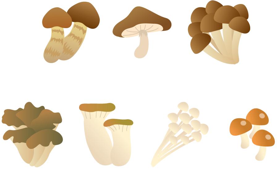 フリーイラスト 松茸や椎茸などの7種類のきのこのセット