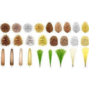 フリーイラスト, ベクター画像, AI, 植物, 松(マツ), 松ぼっくり(松笠), 葉っぱ