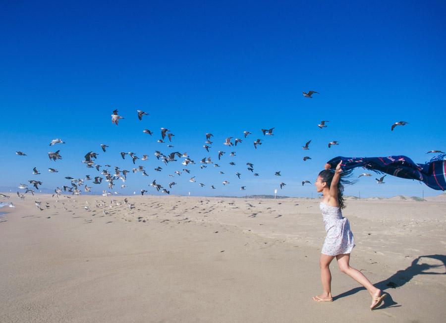 フリー写真 カモメの群れと砂浜を走る女性