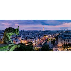 フリー写真, 風景, 建造物, 建築物, 高層ビル, 都市, 街並み(町並み), 彫像, キマイラ(キメラ), 日暮れ, フランスの風景, パリ, エッフェル塔
