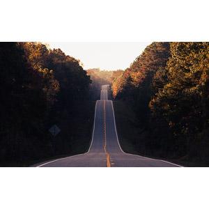 フリー写真, 風景, 道路, 坂道, 樹木