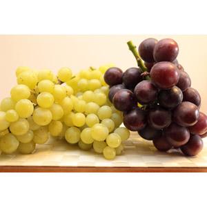 フリー写真, 食べ物(食料), 果物(フルーツ), 葡萄(ブドウ), マスカット