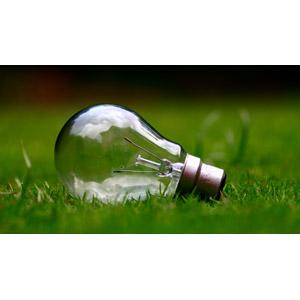 フリー写真, 照明器具, 白熱電球, 芝生