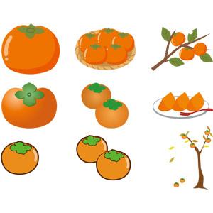 フリーイラスト, ベクター画像, AI, 食べ物(食料), 果物(フルーツ), 柿(カキ), 秋