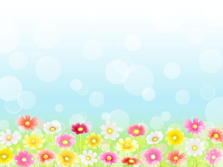 フリー イラストコスモス畑と玉ボケの背景