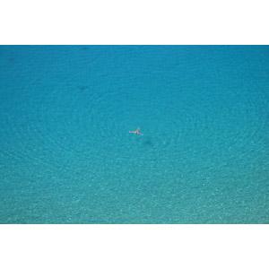 フリー写真, 風景, 海, 波紋, 人と風景, 泳ぐ(水泳)