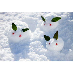 フリー写真, 人形, 雪, 雪うさぎ, 冬, 南天