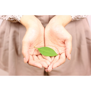 フリー写真, 人体, 手, 植物, 葉っぱ, エコロジー, 掬う手