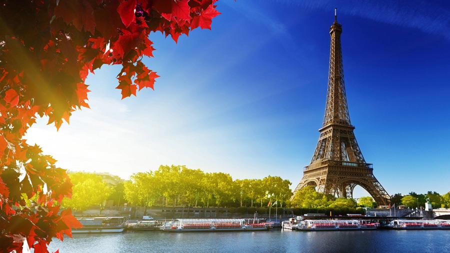 フリー写真 紅葉した楓とエッフェル塔の風景