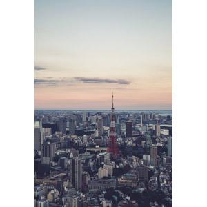 フリー写真, 風景, 建造物, 建築物, 都市, 高層ビル, 街並み(町並み), 夕暮れ(夕方), 塔(タワー), 東京タワー, 日本の風景, 東京都