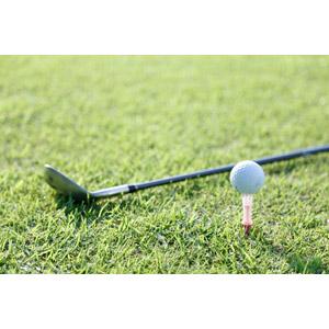 フリー写真, スポーツ, 球技, ゴルフ, ゴルフクラブ, ゴルフボール, 芝生