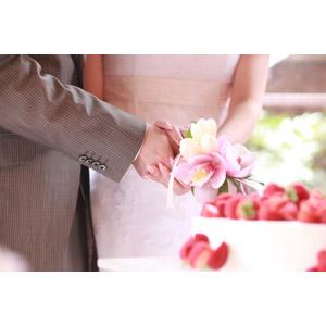 フリー写真, 人物, カップル, 花婿(新郎), 花嫁(新婦), 結婚式(ブライダル), 二人, ウェディングケーキ, ケーキ入刀
