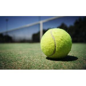 フリー写真, スポーツ, 球技, テニス, テニスボール, テニスコート