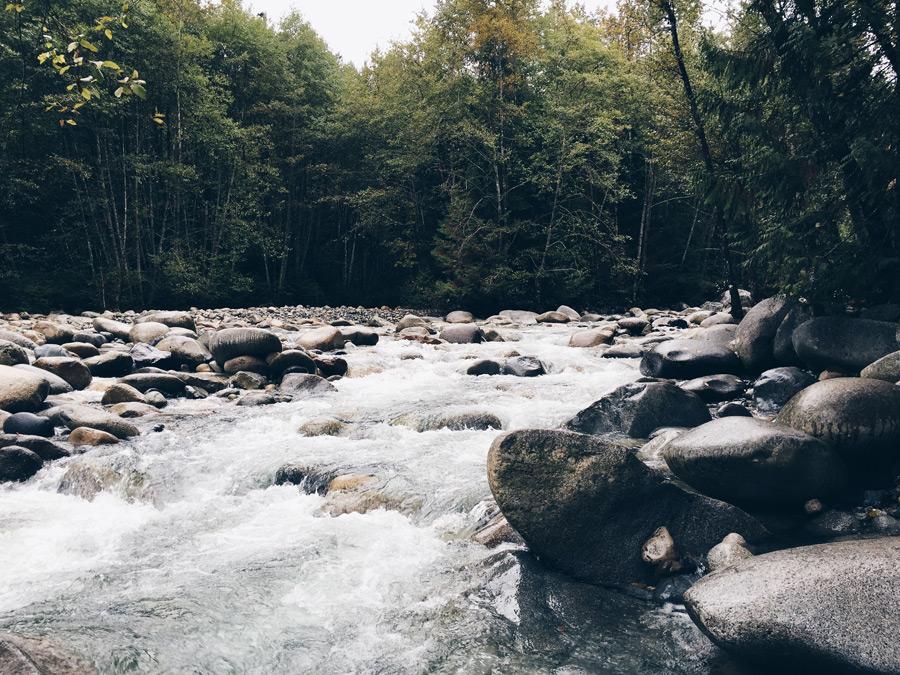 フリー写真 スタンレーパークの渓流の風景