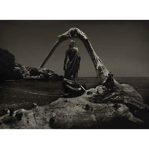 フリー写真, 人物, 女性, 外国人女性, 水着, 後ろ姿, 流木, 人と風景, ビーチ(砂浜), 海, セピア色