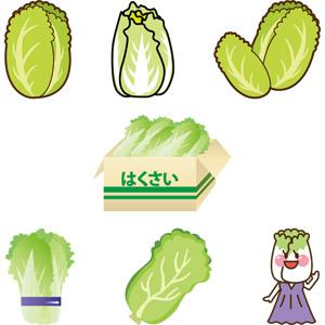フリーイラスト, ベクター画像, AI, 食べ物(食料), 食べ物(食料), 野菜, 白菜(ハクサイ), 冬