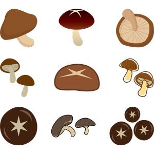 フリーイラスト, ベクター画像, AI, 食べ物(食料), 食用キノコ, 茸(キノコ), 菌類, 椎茸(シイタケ)