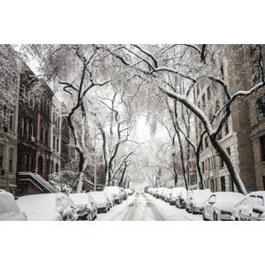 フリー写真, 風景, 建造物, 建築物, 高層ビル, 都市, 街並み(町並み), 道路, 自動車, 樹木, 冬, アメリカ, ニューヨーク, 住宅
