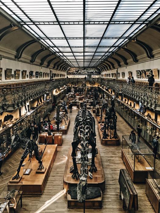 フリー写真 フランスの国立自然史博物館の風景