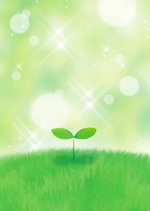 フリーイラスト 光の煌めきと新芽
