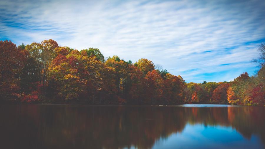 フリー写真 紅葉が始まる木々とパーマー湖の風景