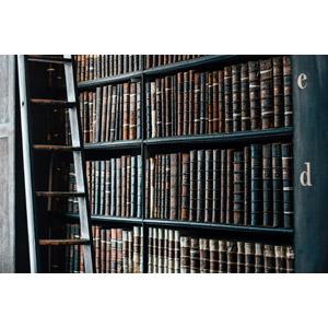 フリー写真, 風景, 図書館, 本棚, 本(書籍), 梯子(はしご)