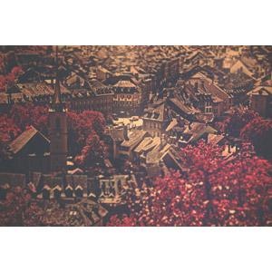 フリー写真, 風景, 建造物, 建築物, 旧市街, ベルン, スイスの風景, 紅葉(黄葉), 秋, 世界遺産
