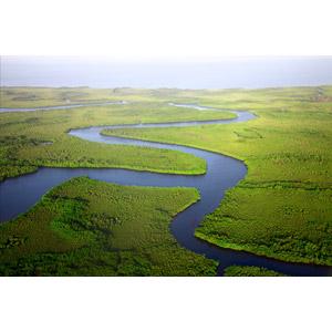 フリー写真, 風景, 自然, 河川, ガンビアの風景