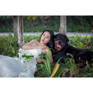 フリー写真, 人物, 女性, アジア人女性, 中国人, ウェディングドレス, 人と動物, 動物, 哺乳類, 犬(イヌ), ロットワイラー, 人と花, 百合(ユリ), 寝転ぶ, 女性(00112)