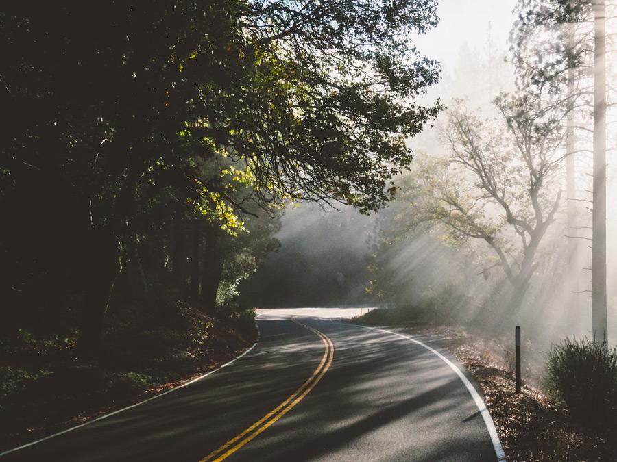 フリー写真 木漏れ日の射す峠道の風景